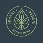 PEBANI INVERSIONES S.A. logo