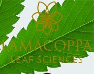 Lamacoppa Leaf Sciences logo